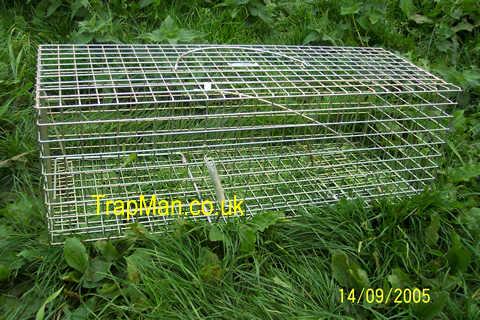 pro gold rabbit trap